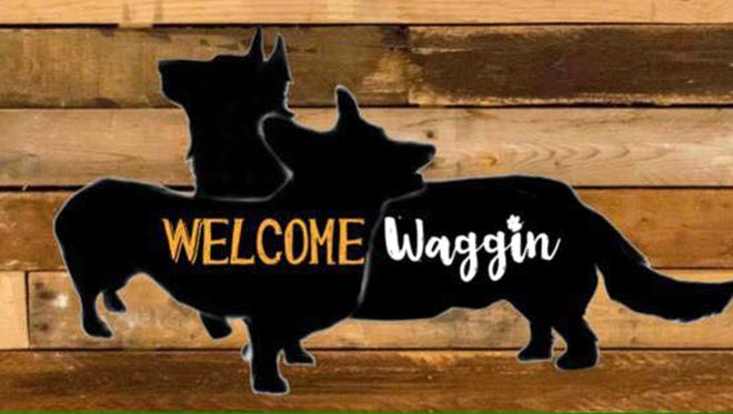 The Welcome Waggin originated with the owner, Tina Wheeler's, love for her two corgis, Ben and Coco.