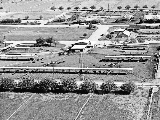 Farmland eventually gave way to ASU's Tempe Research