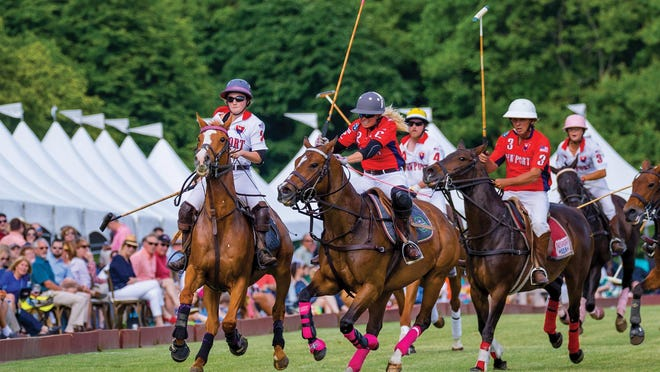 The Newport Polo International Series will play out its 29th season after receiving approval from the state.