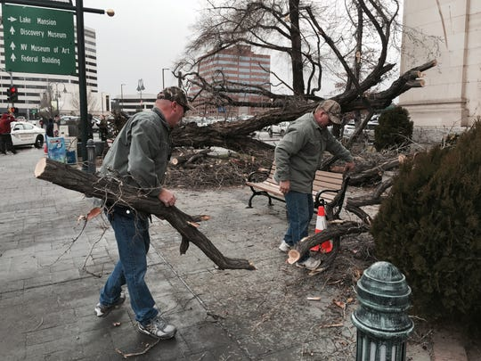 A tree was uprooted in front of the courthouse on Virginia Street.
