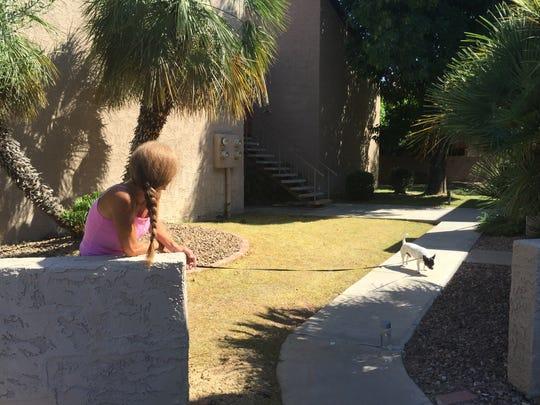 Joan Badgett, 50, who grew up in Mesa, walked her dog,