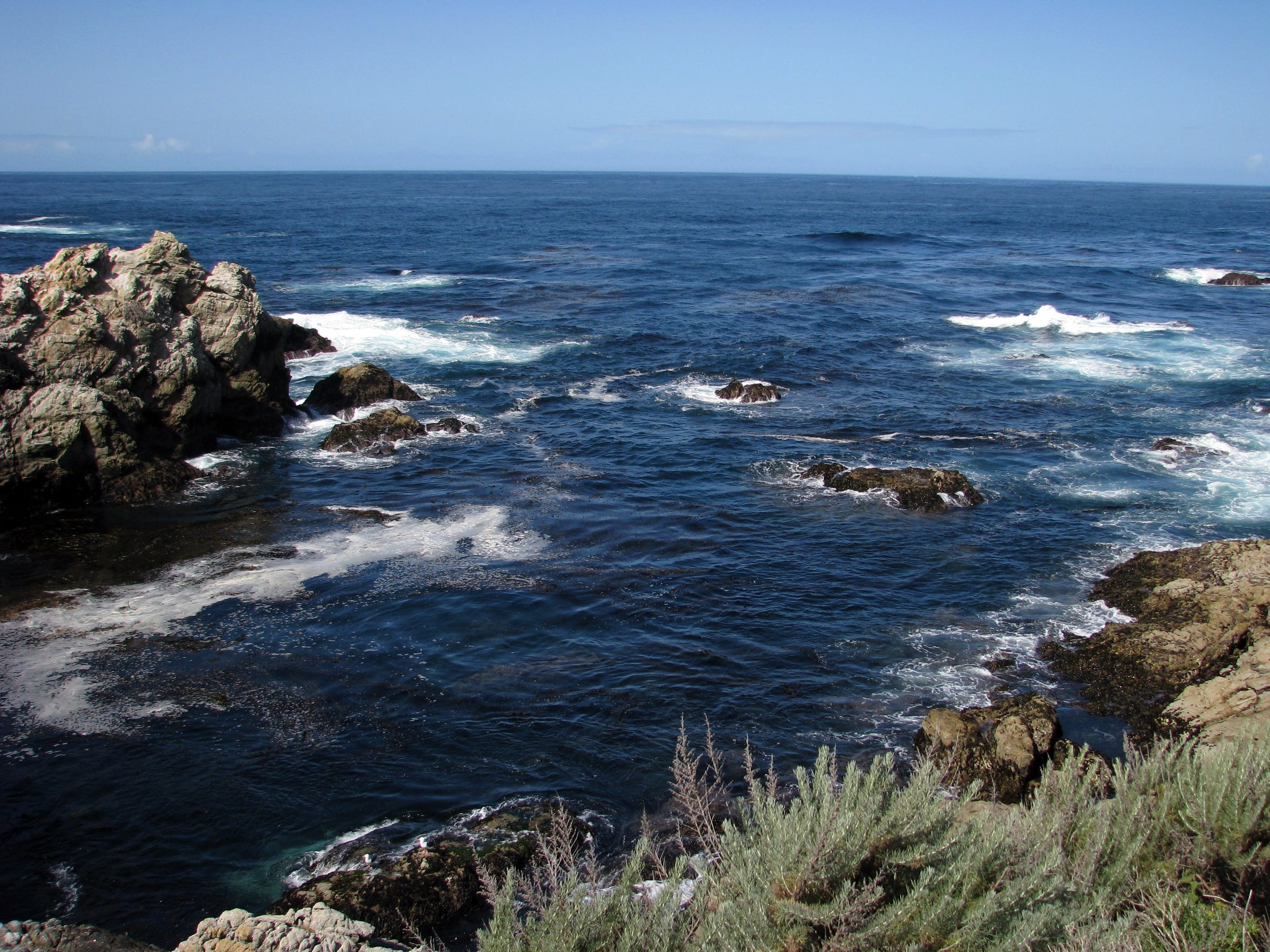 There are plenty of scenic views at Point Lobos south