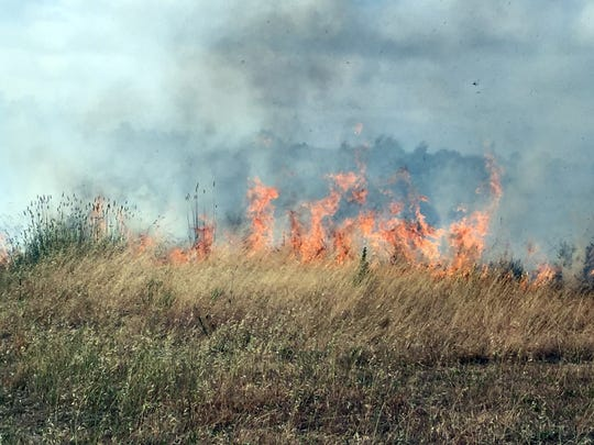 A sizeable brush fire near the Constitution Soccer Complex on Friday is fed by unpredictable winds.