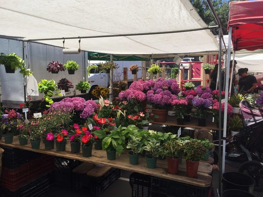 Casa Blanca Nursery's booth at the La Jolla Open Aire Market in La Jolla, Calif., sells plants and fresh flowers.