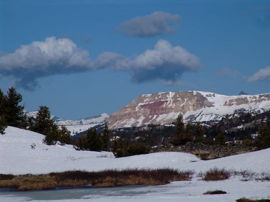 along the Beartooth Highway between Cooke City and