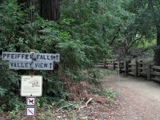 Signs lead hikers to the Valley View and Pfeiffer Falls trails at Pfeiffer Big Sur State Park.