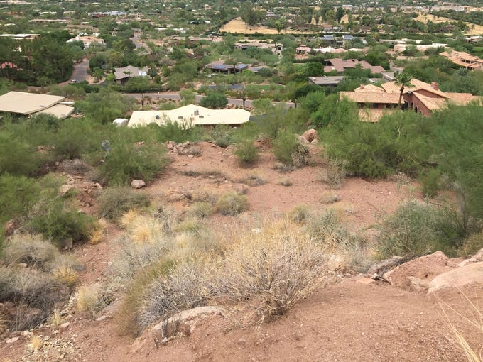 A company named North Camelback LLC wants to build