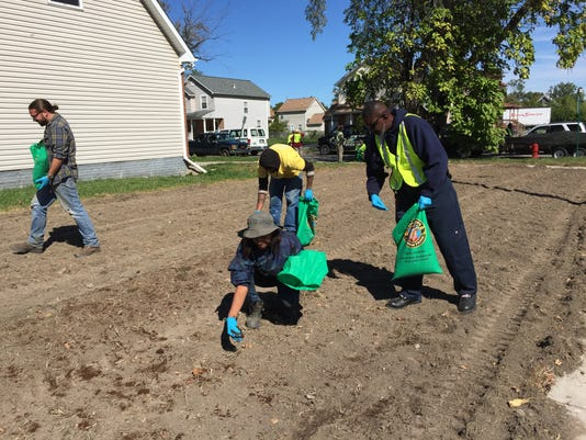 Greening of Detroit worm projects