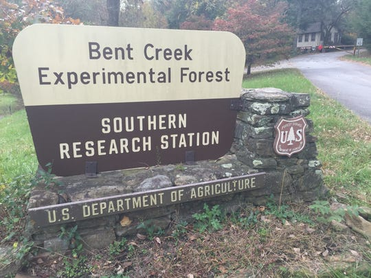 Bent Creek Experimental Forest