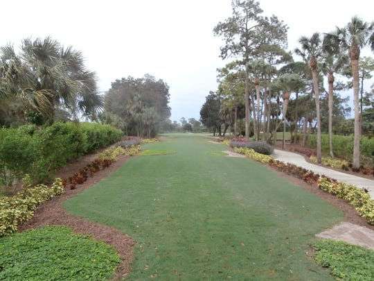 New plants now flank both sides of the first tees on