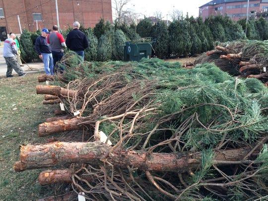 The Kiwanis Christmas Tree Sale lot will open for the season on Nov. 29, 2019.