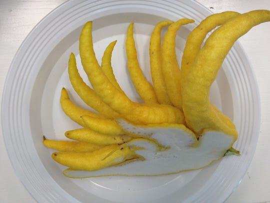 Buddha's Fingers is a potent citrus used for decorations