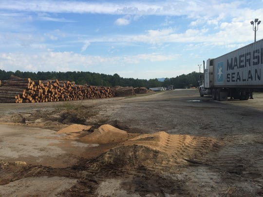 Container being loaded for export at the Gilkey Lumber