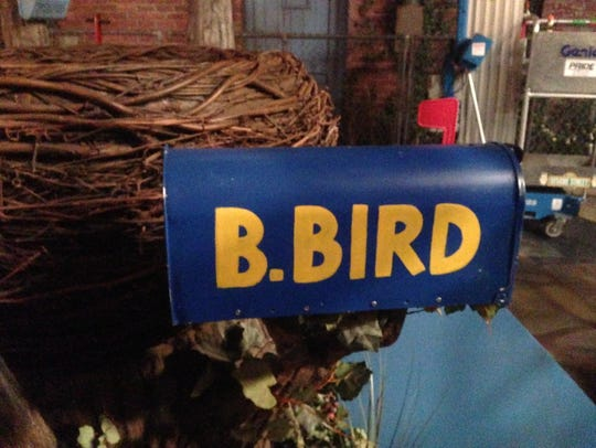 Details of Big Bird's new home in a tree next to the