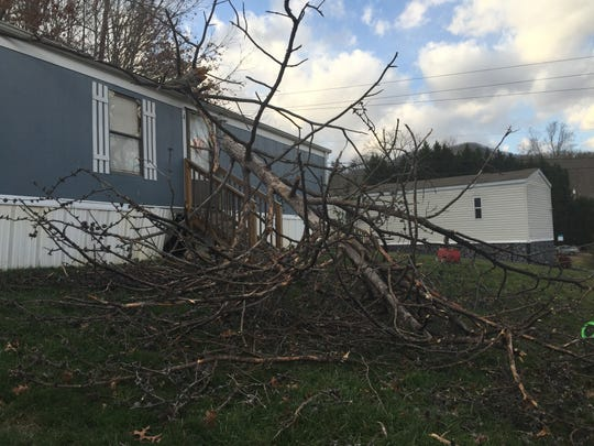 Downed trees, such as this one on Jugtown Road in Candler, caused power outages in Asheville on Tuesday.