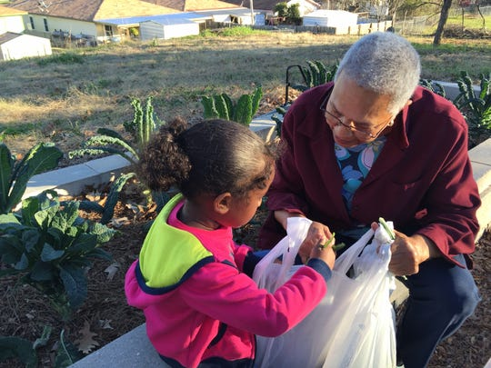 Jackie Jordan, right, helps her granddaughter Akira Lewis, 4, pick greens at a community garden in Stoner Hill.