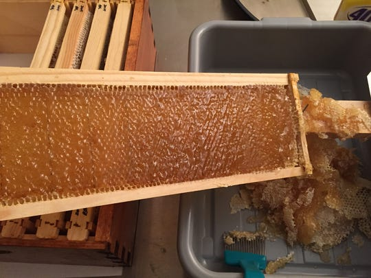 Veteran and beekeeper  Ronnie Hazlett says his apiary produced 35 pounds of honey this year. With more than three times the number of hives this year, more than 500 pounds is possible.