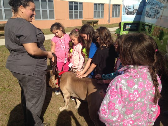 One of the participants in Patriot Elementary School's Career Day was Cape Coral Pet Vet, which brought out its mobile unit. Here, students are introduced to Dolcetto, a 140-pound Italian Mastiff owned by veterinarian technician Marie Roderiques.