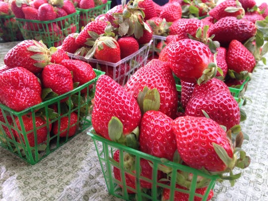 The first of Florida's early-season strawberries have hit farmers markets and grocery aisles.