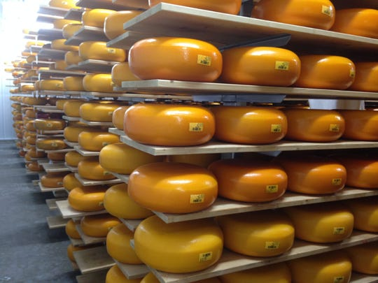 The aging room at Holland's Family Cheese in Thorp.