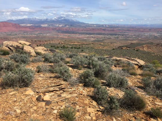 The scenery on the trails on which the Red Mountain