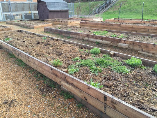 Dixon Education Center received a grant from the Staunton Rotary Club to build above-ground vegetable and flower gardens behind the school. Last year they grew peppers, peas, beans and tomatoes. They will expand the beds this year.