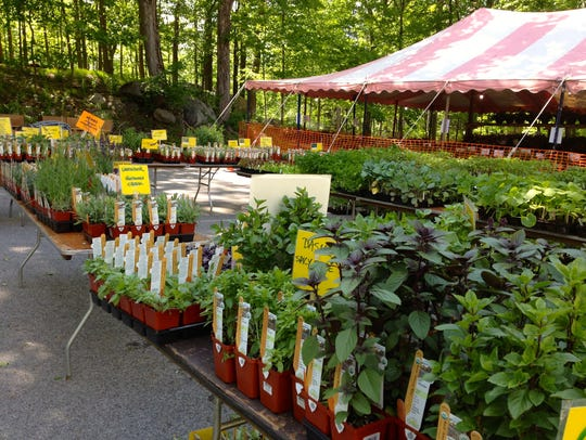 Don't miss Teatown's annual PlantFest on May 11.