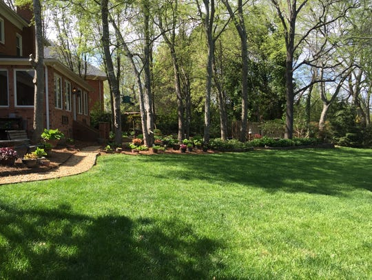 Sandra and David Arnold will open their garden for