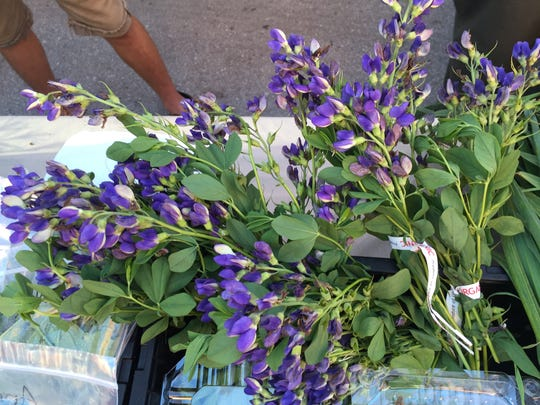 Indigo bouquets from Wabi Sabi Farm.
