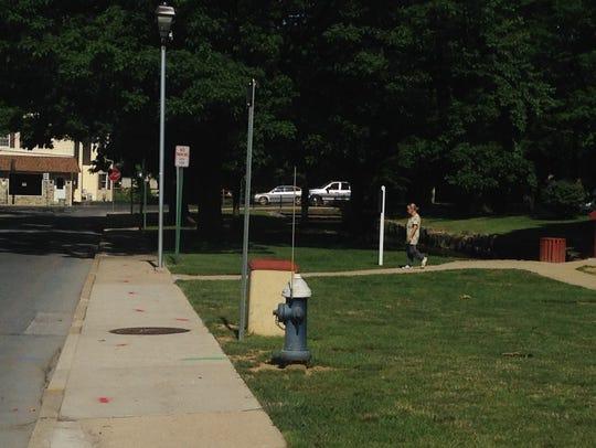 A rain garden will be installed along Rhodes Drive