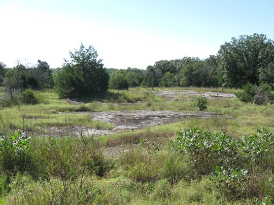 A view of the future Cory Flatrock Conservation Area,