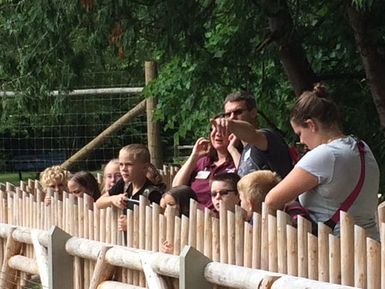 Potter Park Zoo visitors Friday watch Meeko and Willow