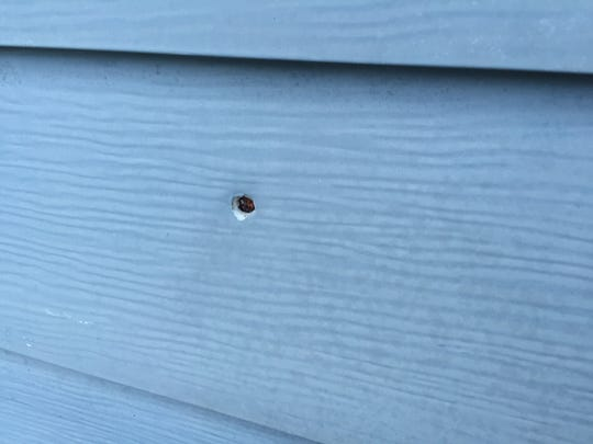 A bullet hole in a northeast Des Moines home, a result of a 2012 drive-by shooting.