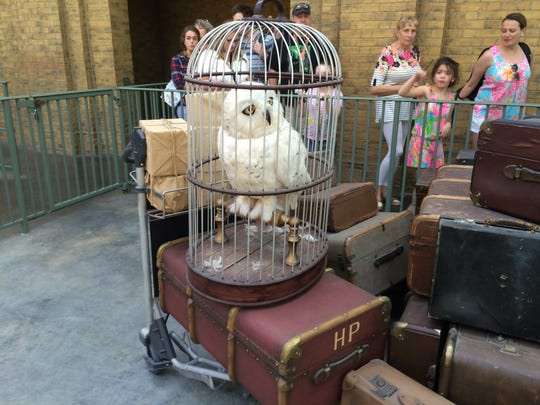 Harry Potter's owl Hedwig patiently waits to be loaded onto the Hogwarts Express in Diagon Alley at Universal Studios Orlando.