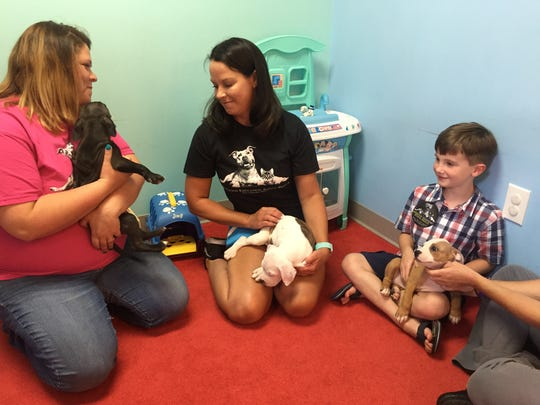 Operation Education Animal Rescue founder Tiffany Gaylon, volunteer Shelly Thorburn and 7-year-old Connor Clagg hold puppies up for adoption.