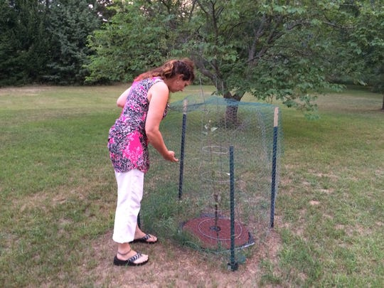 A growing apple tree reminds Unadilla Township Trustee