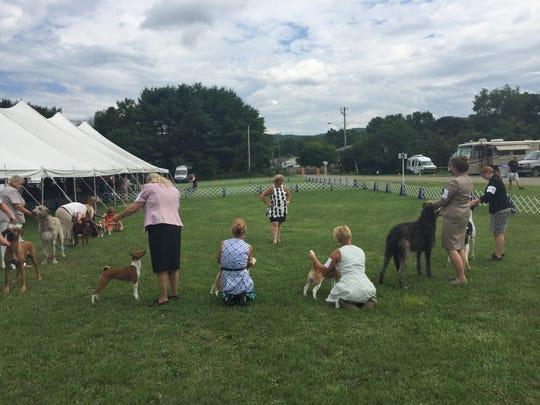 The Hickories Circuit Dog Show runs through Sunday.