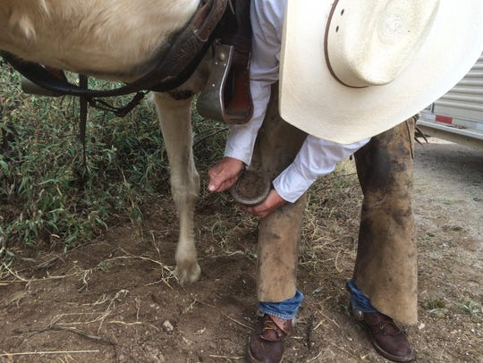 Sid Kahla removes caked mud from his horse's hoof,