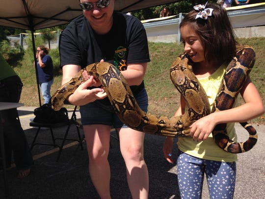 Madison Stewart, 8, holds a boa constrictor brought to AnimalPalooza last year by the Tri-State Herpetological Society.