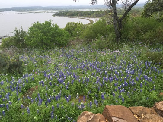 Lake Buchanan as seen from Canyon of the Eagles.