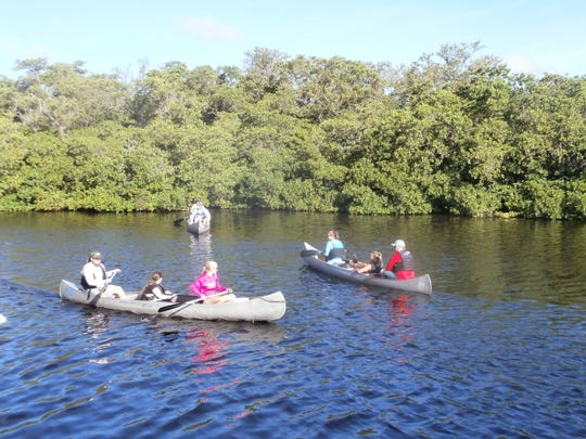 FGCU students venture out in canoes to collect Crown Conch snails during a marine science class.