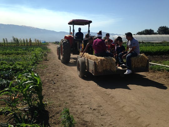 ALBA's Family Farm Day featured a chance for people