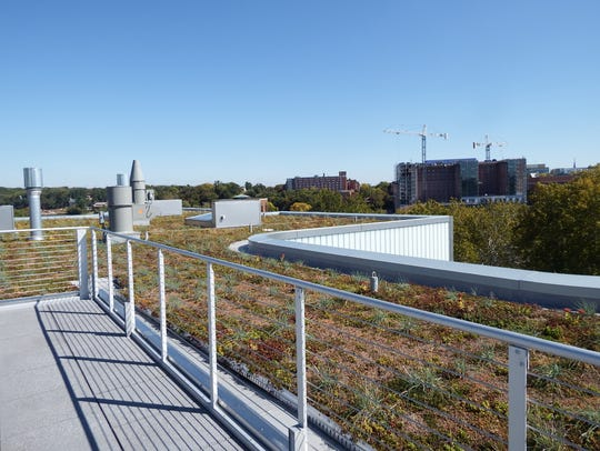 The 16,000 square foot green roof of UI's new Visual