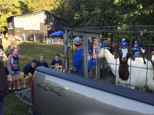A group of North Stewart Elementary students learn