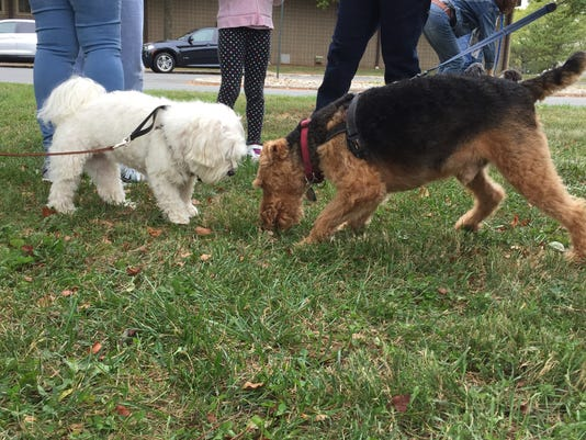 Franklin Township Animal Shelter pet blessing