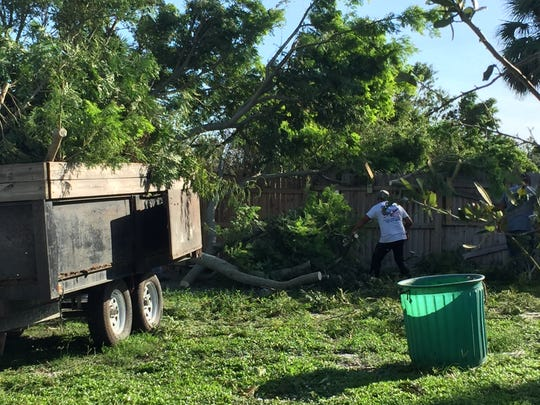 An American Irrigation crew removes a downed tree in the big dog field.