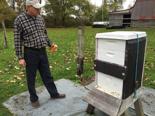 Tim Volke checks out a hive at his North Street home.