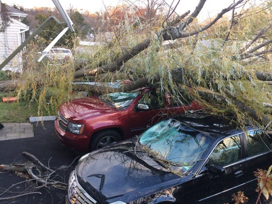 Damage is evident to parked cars after a tree fell on them on Windermere Avenue in Verona Nov. 21, 2016.