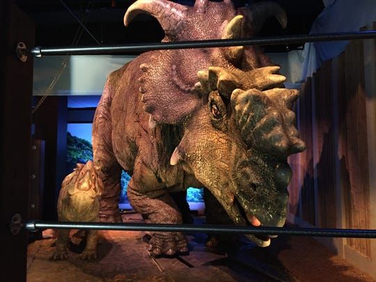 "This Wednesday, Nov. 23, 2016 photo, shows a  pair of pachyrhinosaurus that move around as part of the ""Jurassic World"" exhibit opening Friday, Nov. 25, at the Franklin Institute in Philadelphia."
