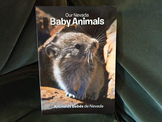 Our Nevada Baby Animals is a bilingual picture book available at Sundance Books and Music for $10.